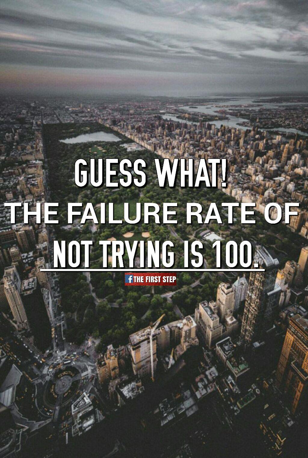 Quote (919)